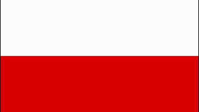 ポーランドでの就労ビザ取得までの記録